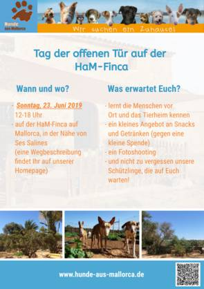 Akzeptables Dating-Angebot